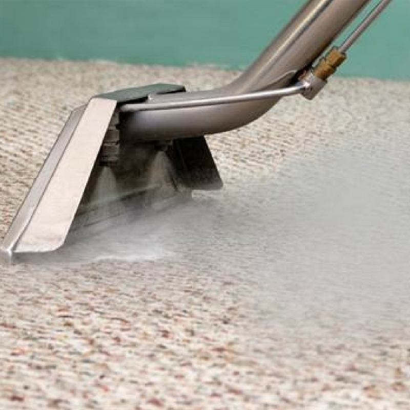 steam cleaning a shaggy rug