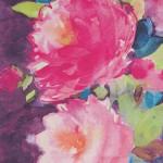 Fiona Douglas Feature Image 2