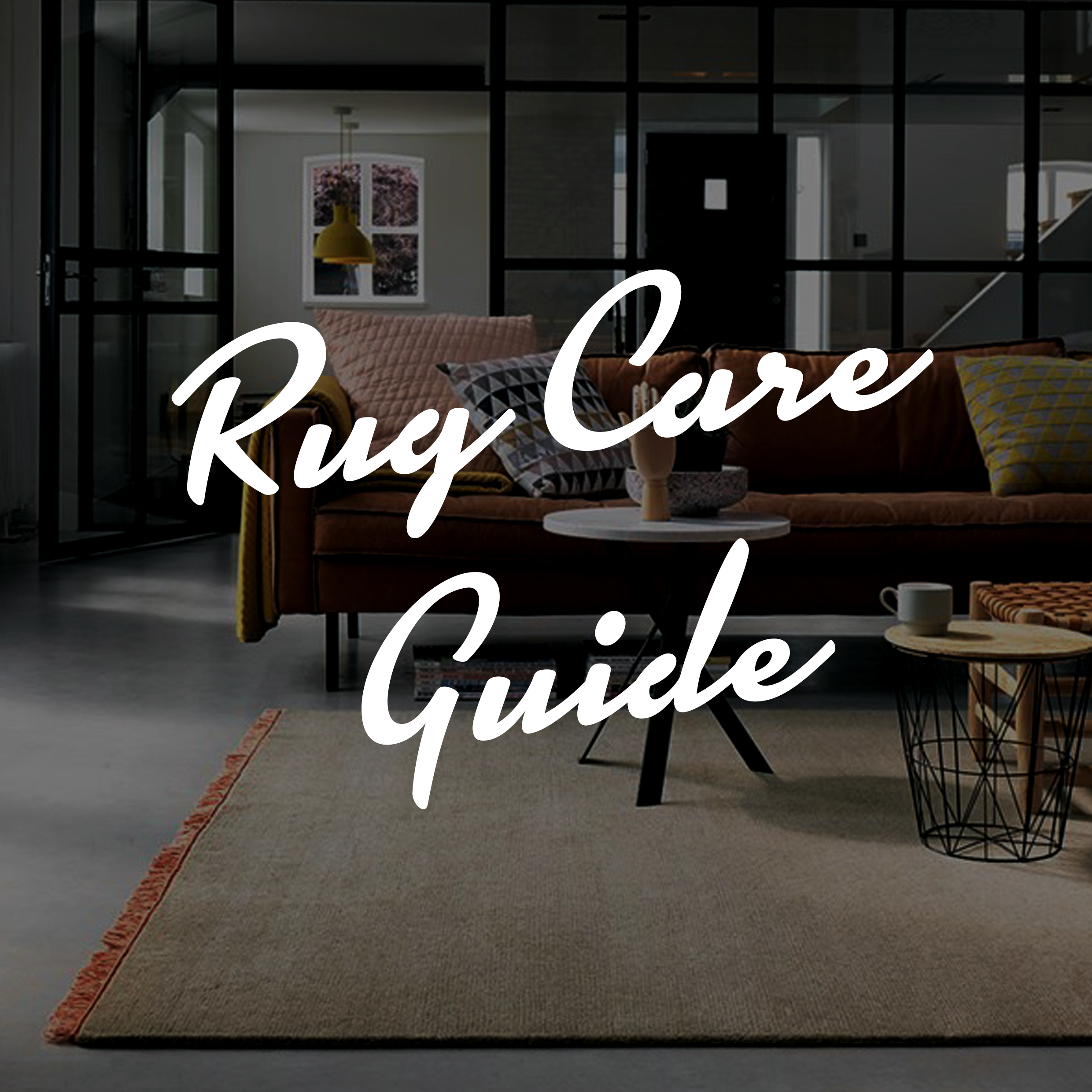 rug care guide featured image