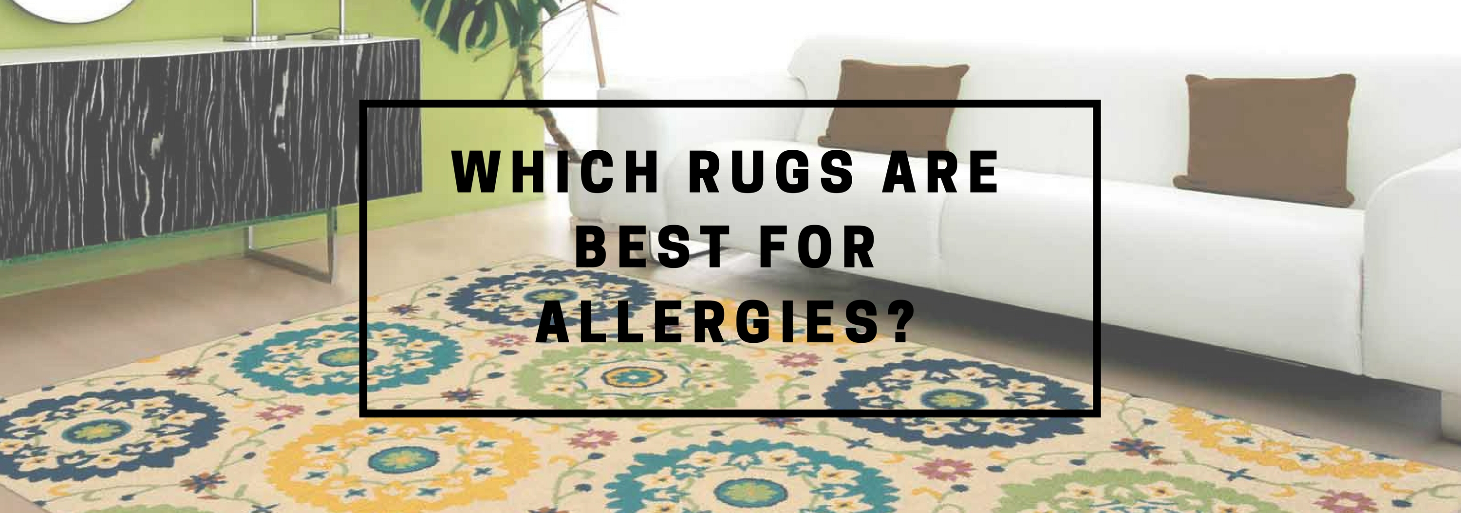 The Causes Of Rug Allergies And Suitable Rugs The Rug Seller