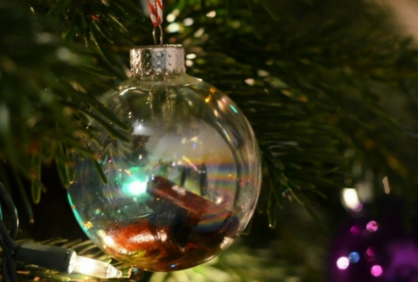 a handmade glass bauble on a pine tree full of cinammon and oil for a smell - Christmas Tree Smell