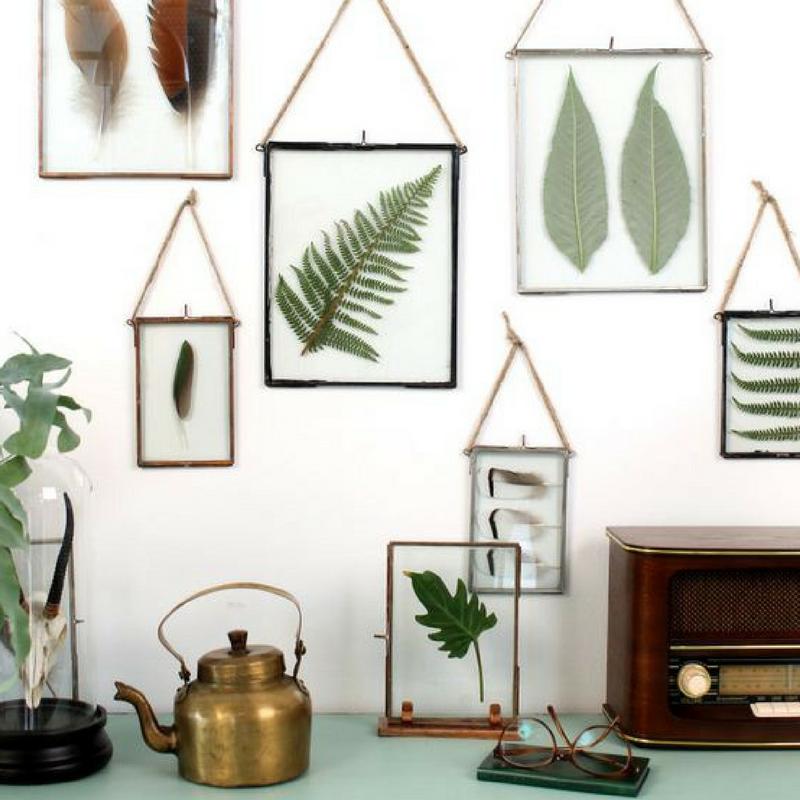 framed leaves botanical