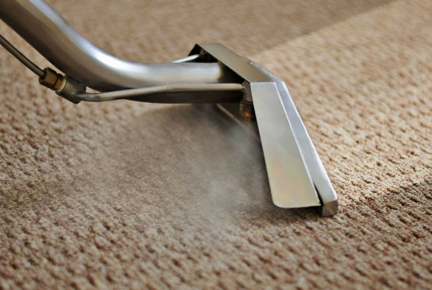 natural fibre rugs steaming care
