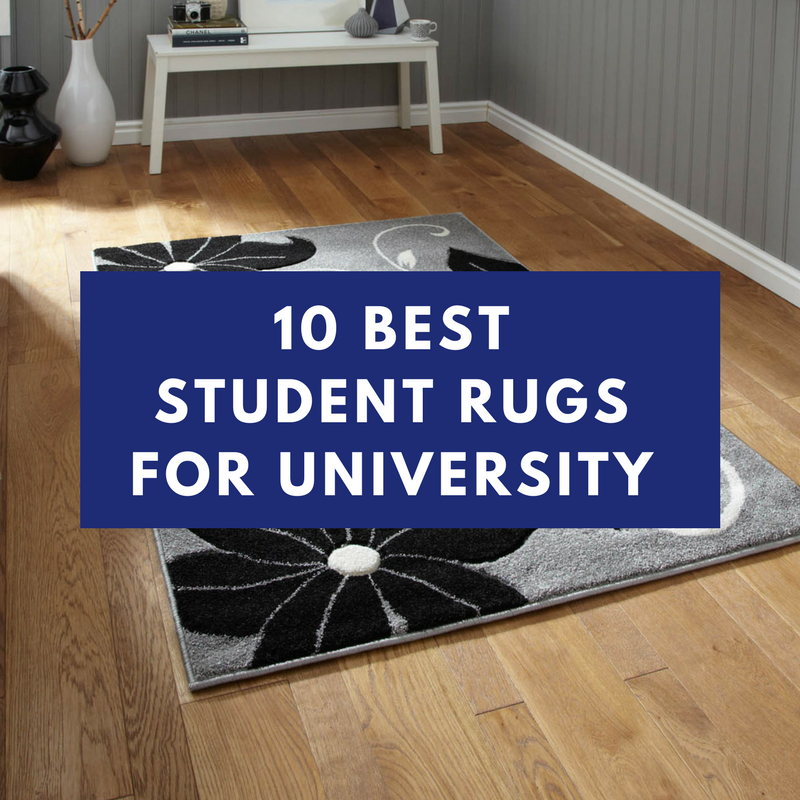 best student rugs featured image