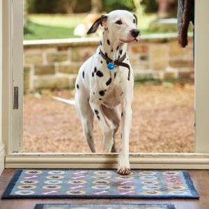 pet-friendly patterned rugs for pets