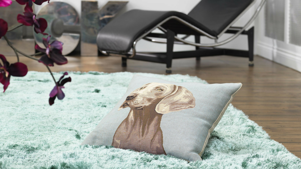 comfort blue shaggy rug with a dog pillow on top