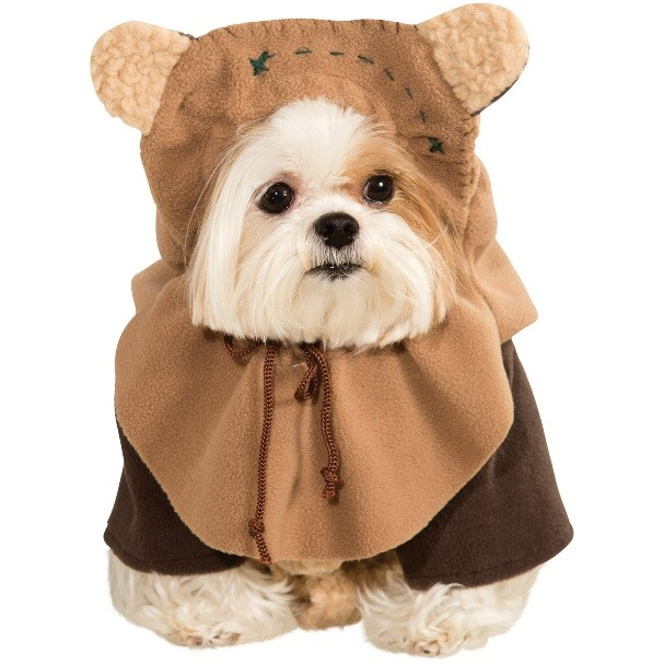 Star Wars May the 4th be with you cute dog in an ewok outfit