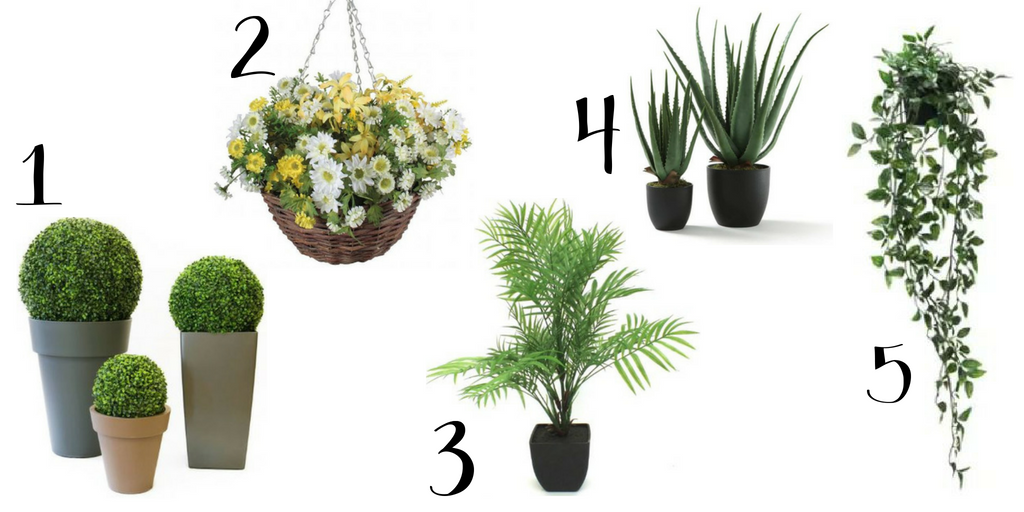 Outdoor Space Greenery Life Plants