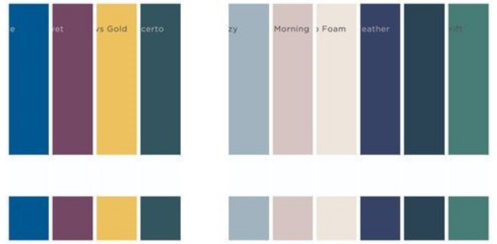 Meghan Markle's Colour Tones That She Has Worn