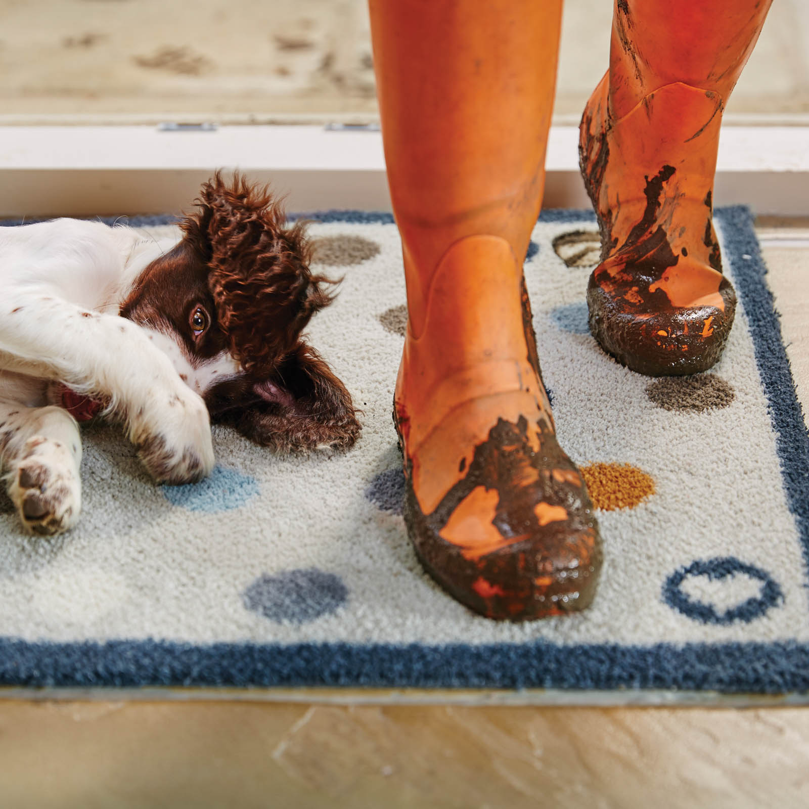 Contemporary Hug Rug Door mats