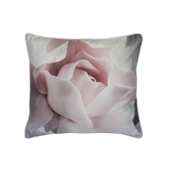 Ted Baker Cushions