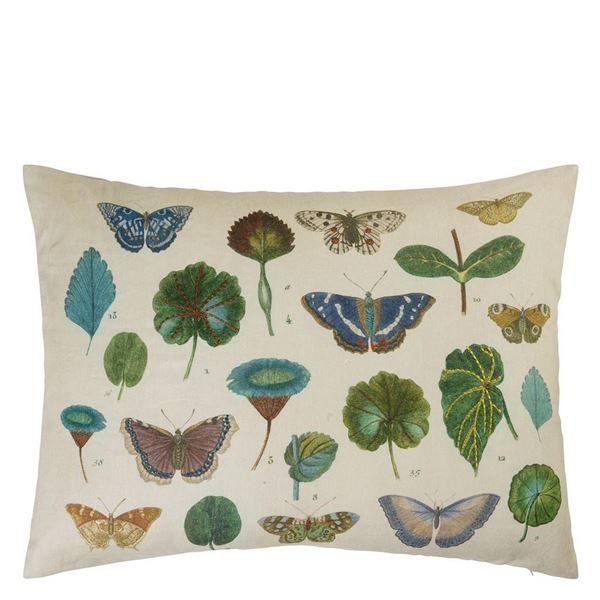 Leaf And Butterfly Study Cushion - Linen