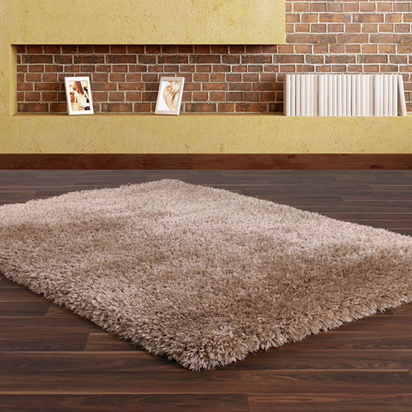 Allure Shaggy Rugs in Mink