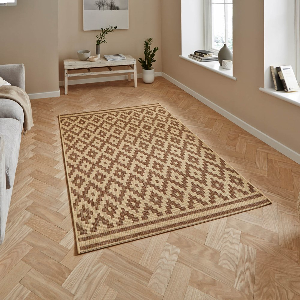 Cottage Rugs CT5581 In Natural And Brown Buy Online From