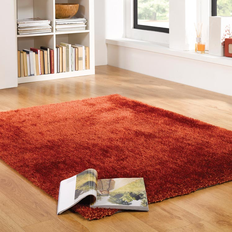 Grande Vista Shaggy Rugs in Orange