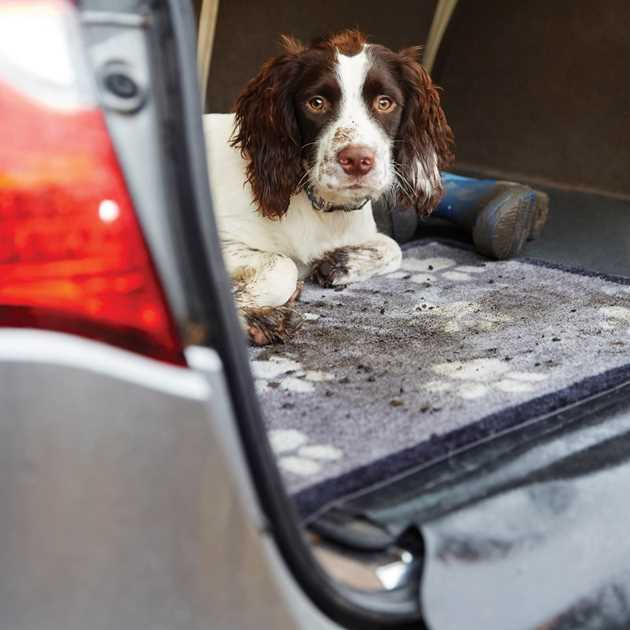 Big Paw Car Boot Mats 1 by Howler & Scratch