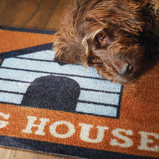 Howler & Scratch Dog House Mats 2 in orange and blue