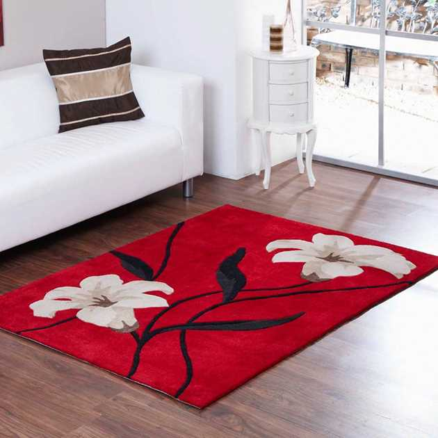 Aspire Lawrence Rugs in Red