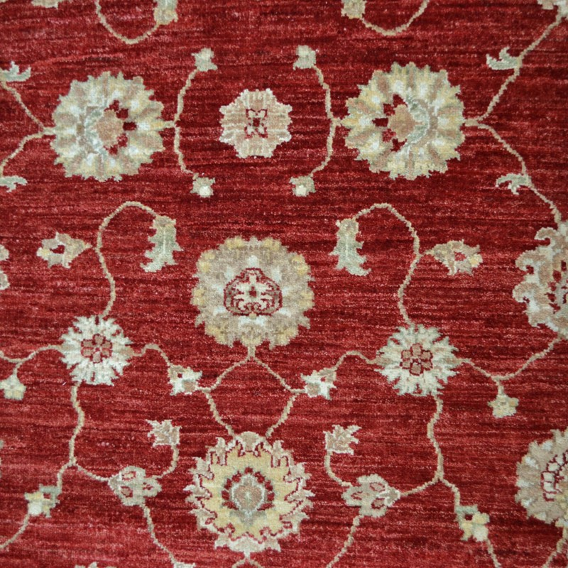 Hand Knotted Ziegler Wool Rugs In Red Cream Buy Online