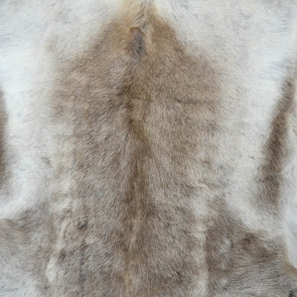 Reindeer Skin Rugs Free Uk Delivery The Rug Seller