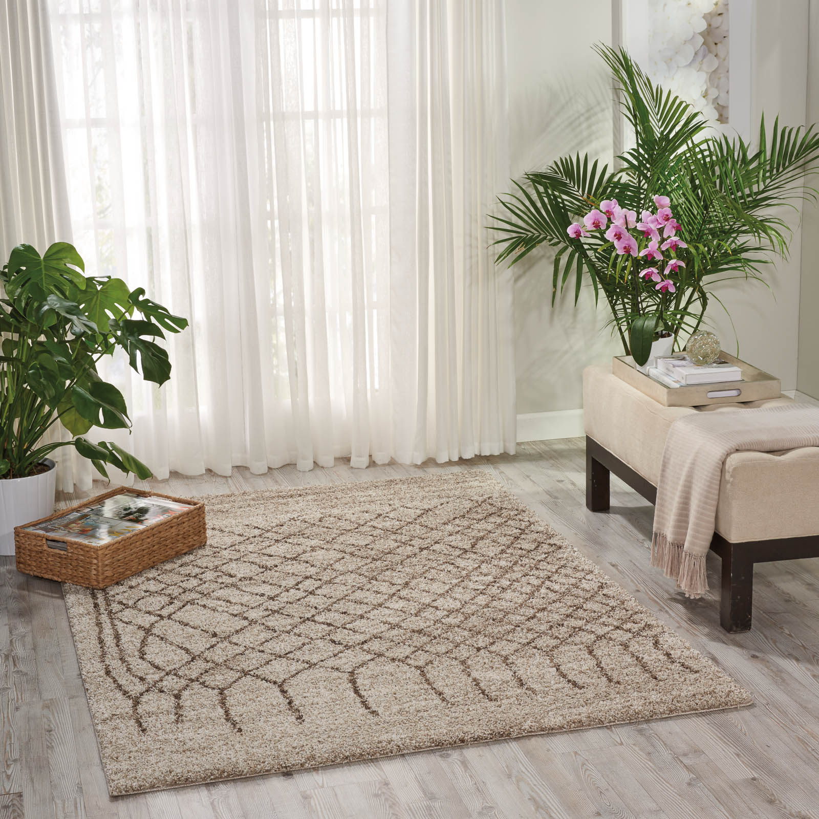 Tangier Rugs TAN05 in Bone