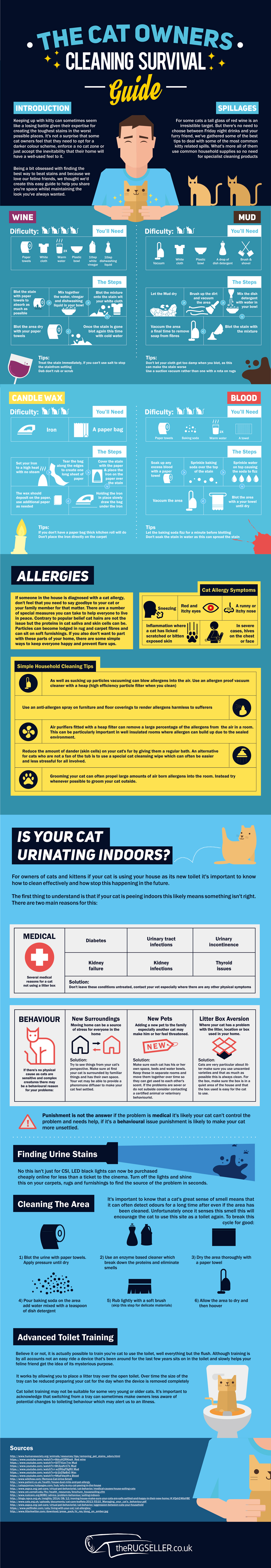 Cat Owners Carpet and Rug Cleaning Guide